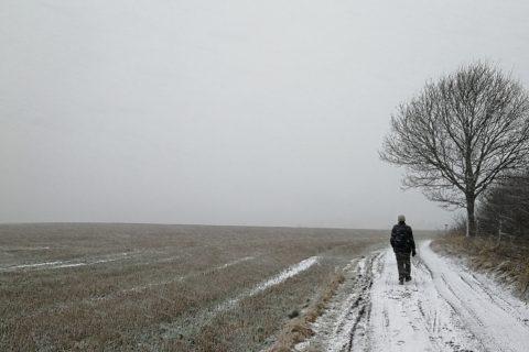 Den Danske Klosterrute: Gurre – Esrum (16 km)